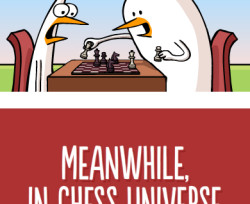 What's it's like in chess to turn into a Queen