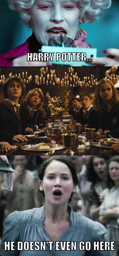 Harry Potter Hunger Games